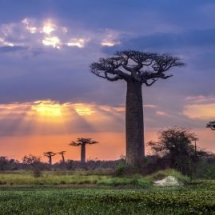 África Madagascar