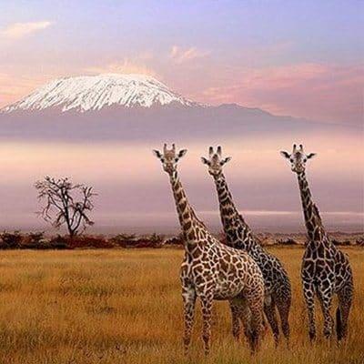 Mejores Destinos de África