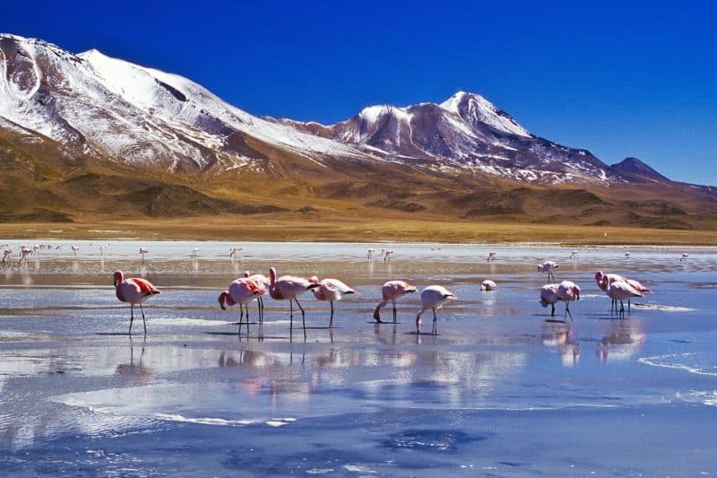 Que cosas ver y hacer en Bolivia - Visitar lugares turisticos y destinos principales
