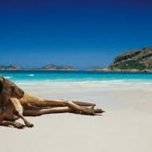 Que cosas ver y hacer en Oceania - Visitar lugares turisticos y destinos