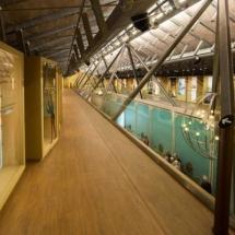 que-ver-en-prado-del-rey-espana-museo