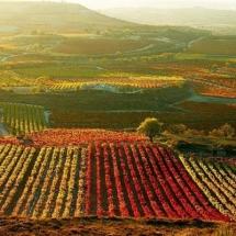 que-ver-en-rioja-espana-paisajes
