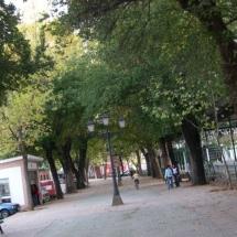 que-ver-en-constantina-espana-calle-alameda-min