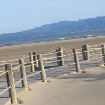 que-ver-en-deltebre-espana-playa-de-riumar-min
