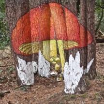 que-ver-en-prades-espana-bosque-de-poblet-min