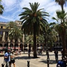 que-ver-en-barcelona-espana-europa-5