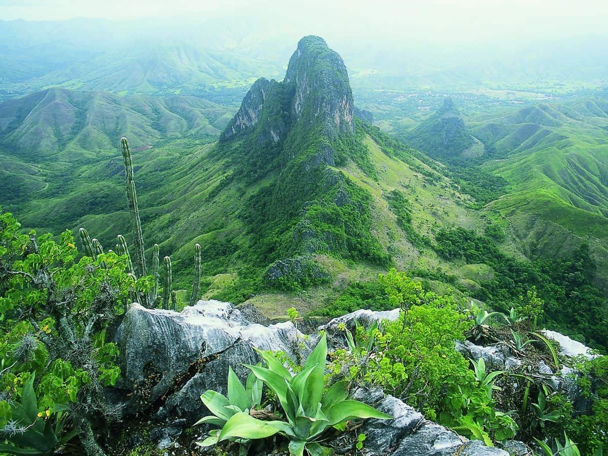 ¿Cuáles son Las 7 Maravillas Naturales de Venezuela?